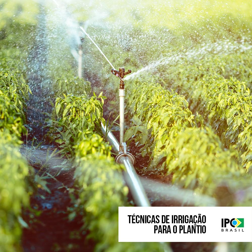 Técnicas de irrigação para o início do plantio